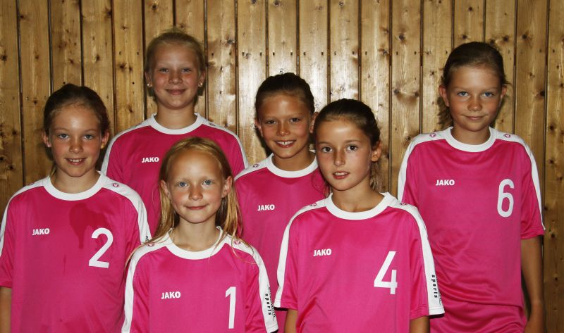 b_800_0_0_10_images_Volleyball_Maedchen_MF_U13_2016_2017.jpg