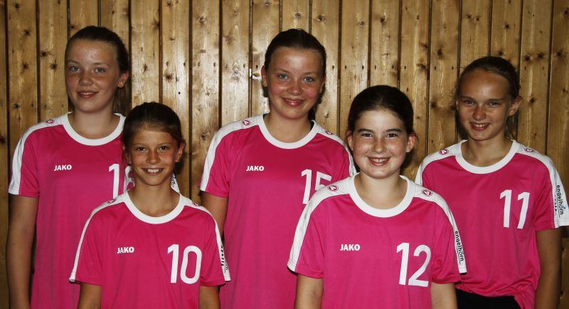 b_800_0_0_10_images_Volleyball_Maedchen_MF_U14_2016_2017.jpg